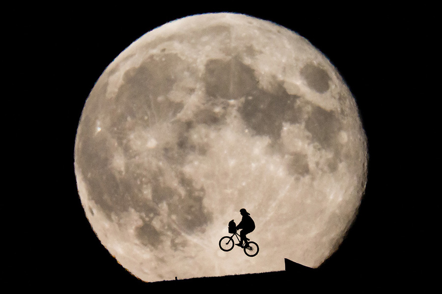 Ein Mountainbiker springt in Anlehnung an den Film E.T. mit einem Plüschtier über eine Rampe vor dem aufgehenden Vollmond am 21. August 2013.